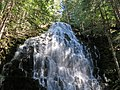 Ramona Falls at Mount Hood Wilderness in Oregon 1.jpg