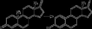 Catamenial epilepsy - Aromatase converts androstenedione to estrone