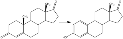 Reaction-Androstendione-Estrone.png