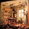 Reconstitution du cabinet d'histoire naturelle du professeur Jean Hermann.jpg