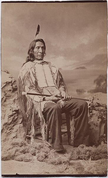 Файл:Red Cloud by John K Hillers circa 1880.jpg