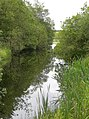 Reflections On The Burn - geograph.org.uk - 476106.jpg