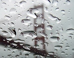 The Golden Gate Bridge refracted in rain drops acting as lenses.