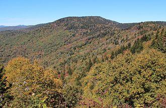 Great Balsam Mountains - Reinhart Knob
