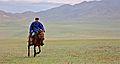 Rider in Mongolia, 2012.jpg