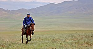 Nomad - Rider in Mongolia, 2012. While nomadic life is less common in modern times, the horse remains a national symbol in Mongolia.