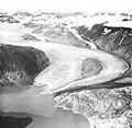 Riggs Glacier, tidewater glacier terminus, circa 1981 (GLACIERS 5870).jpg