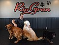Rio Gran Boarding, Daycare & Training Academy owner Jeff Peters.jpg