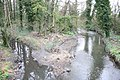 River Crane - geograph.org.uk - 726140.jpg