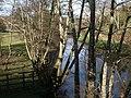 River Teign - geograph.org.uk - 1228615.jpg
