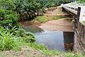 RiversOfSabah SungaiTelupid-02.jpg
