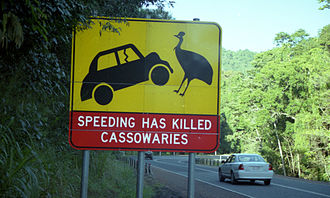Cassowary - A road sign in Cairns, Queensland, Australia