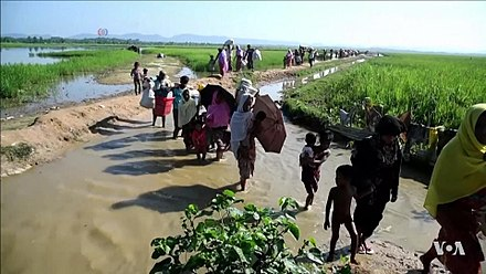 Rohingya refugees entering Bangladesh from Myanmar Rohingya refugees entering Bangladesh after being driven out of Myanmar, 2017.JPG