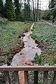 Rombergpark-100330-11315-Bachlauf.jpg
