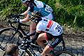 Ronde van Vlaanderen 2015 - Oude Kwaremont (16868569869).jpg