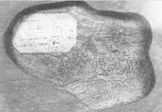 Rongorongo text F - Image: Rongorongo F b Stephen Chauvet fragment