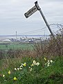 Rustic Signpost near Horkstow - geograph.org.uk - 1806387.jpg