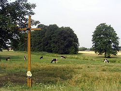 Rzeczyca krzyż.jpg