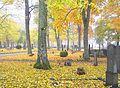 Södra kyrkogården in Visby in October 2009.jpg