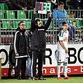SV Mattersburg vs. SK Rapid Wien 2015-11-21 (172).jpg