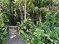 San Juan Botanical Garden - DSC07096.JPG