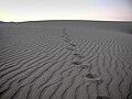 Sand Mountain Recreation Area.jpg