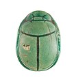 Scarab Inscribed with the Throne Name of Thutmose III MET 27.3.319 top.jpg