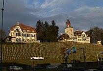 SchlossHeerbrugg3.JPG
