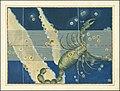 Scorpio - Johann Bayer.jpg