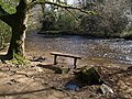 Seat by the Bovey - geograph.org.uk - 1210190.jpg