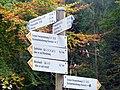 Sehr gute Wegbeschreibung im Soonwald - panoramio.jpg