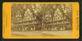 Senter House, Center Harbor, N.H, by Bates, Joseph L., 1806 or 7-1886 2.png