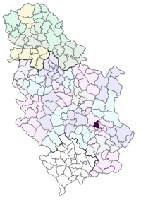 Location of the municipality of Crveni Krst within Serbia