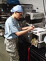 Service members provide veterinary care for patients during IRT mission at Norwich, NY 150713-A-SC854-635.jpg