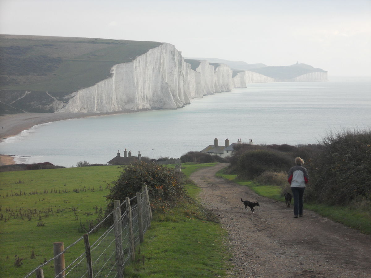 Seaford Head Nature Reserve - Wikipedia