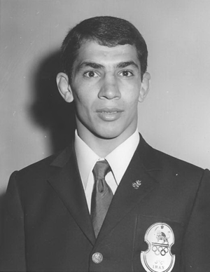 Shamseddin Seyed-Abbasi