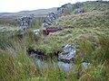 Sheep dip - geograph.org.uk - 547720.jpg