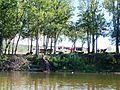 Shenandoah, VA, USA - panoramio (4).jpg