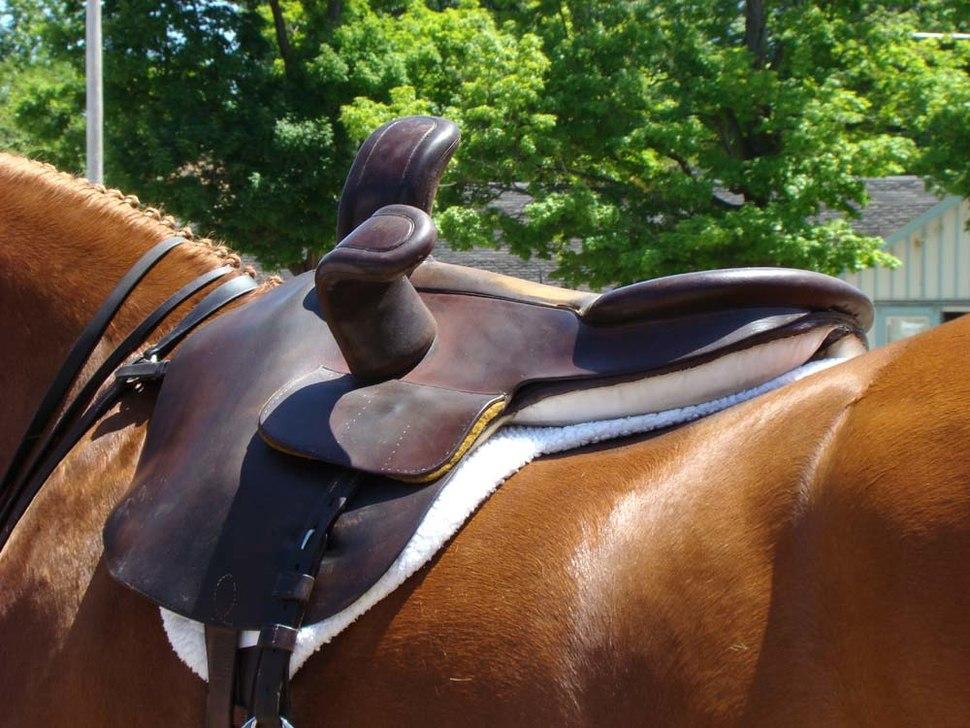 Sidesaddle back Devon PA