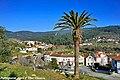 Silva Escura - Portugal (5115146072).jpg