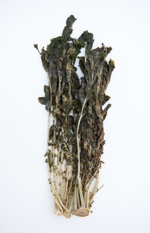 Siraegi - Siraegi (dried radish greens)
