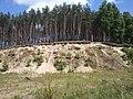 Skarpa - panoramio (2).jpg