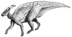 Dessin d'un Parasaurolophus
