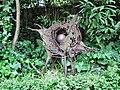 Skulptur Margot Stempel-Lebert.jpg