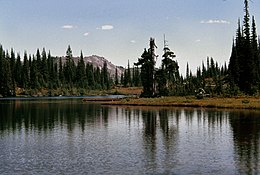 Small Lake at Indian Heaven.jpg