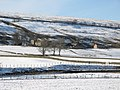 Snowy West Allen Dale around Ouston - geograph.org.uk - 1755353.jpg