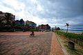 South Africa - Durban (12817797055).jpg