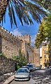Spain Andalusia Marbella BW 2015-10-28 12-20-31.jpg