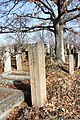 Spomenici na seoskom groblju u Nevadama (2).jpg