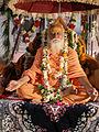 Sri Sri Sri 1008 Mahamandeleshwar Swami Alakhgiriji Maharaj.jpg